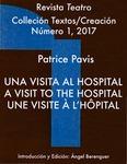 Una Visita al Hospital: A Visit to the Hospital: Une Visite à l'Hôpital by Patrice Pavis and Ángel Berenguer